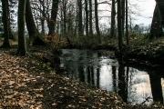 Albersdorf-Mühlenteich