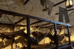 Seelenfänger Photographie   Edingburgh